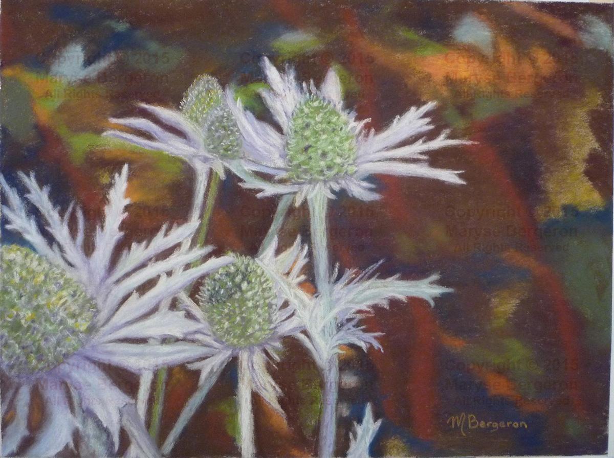 Prickly Archichokes - Maryse Bergeron