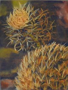 Prickly Dream - Maryse Bergeron
