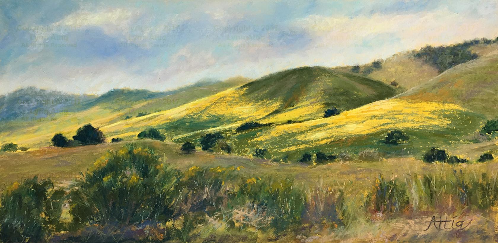 Suey Ranch Wildflowers - Lynn Attig