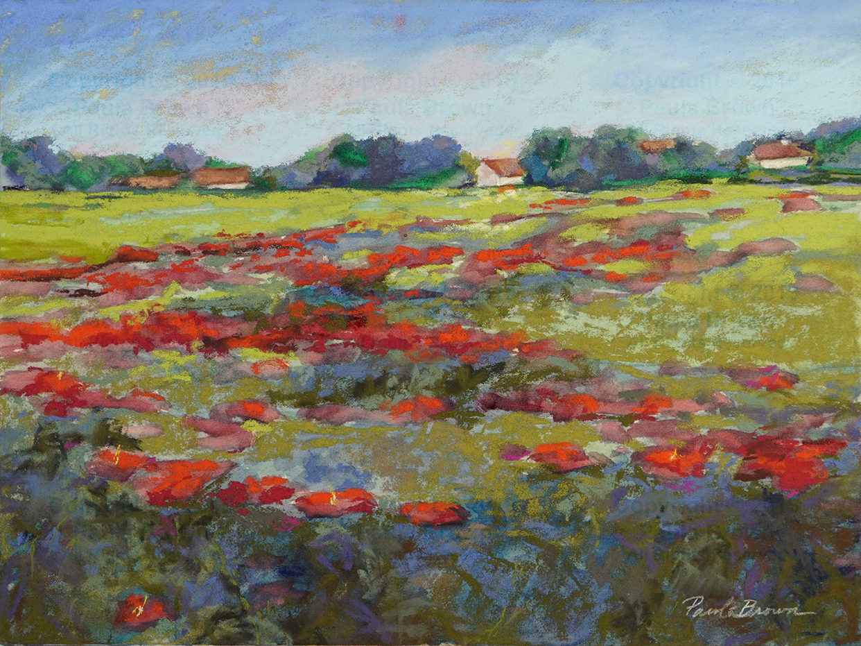 Poppies Field - Paula Brown