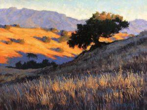 Golden Hills 9 - David Wolfram
