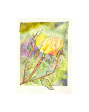 Framed Watercolor Giclee